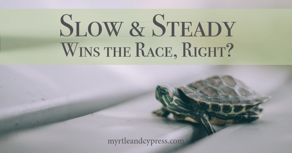 Slow and Steady Wins the Race, Right?